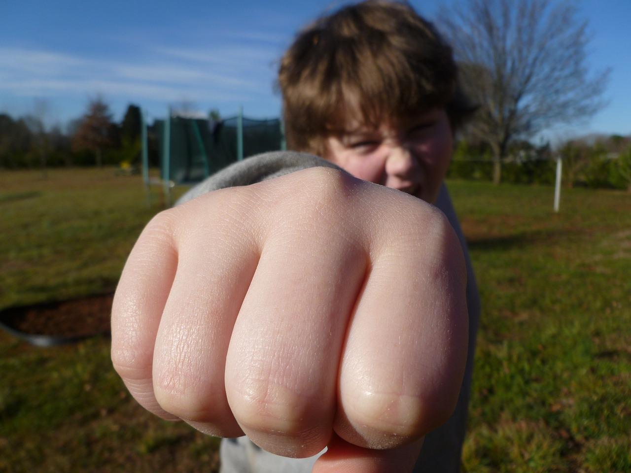 fist-bump-933916_1280